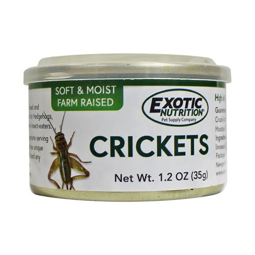 Canned-Crickets-New-1.jpg