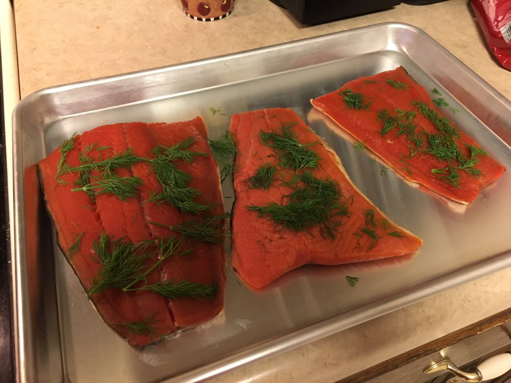 Lox picture.JPG