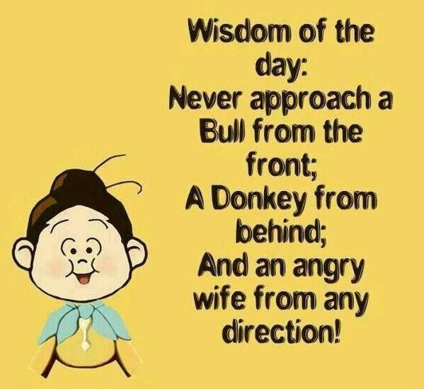 most-funny-quotes-wisdom-of-the-day.jpg