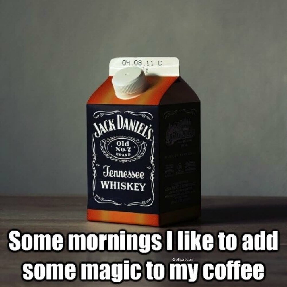 Whiskey-Bottle-For-Morning-Funny-Alcohol-2.jpg