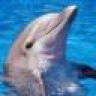 dolphage2