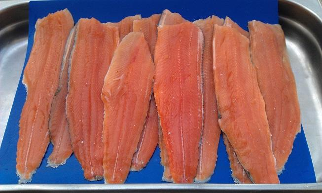 Trout Fillets.jpg